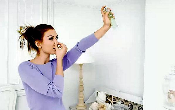 Неприятный запах в квартире: как избавиться?